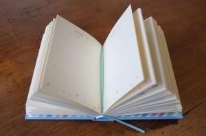 A Sentance A Day Journal