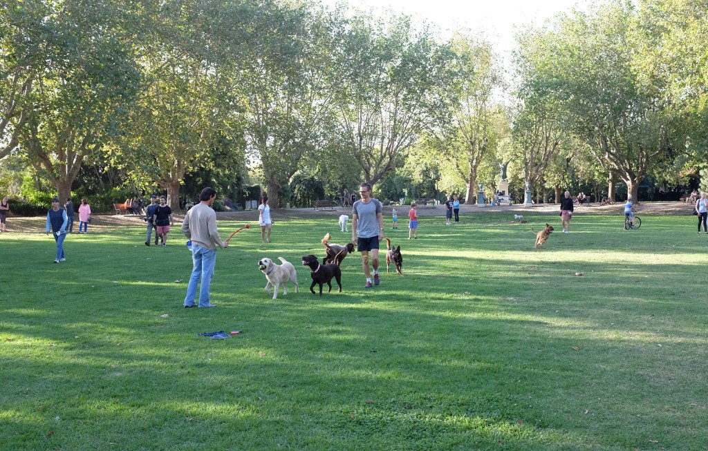 Dog lovers Park
