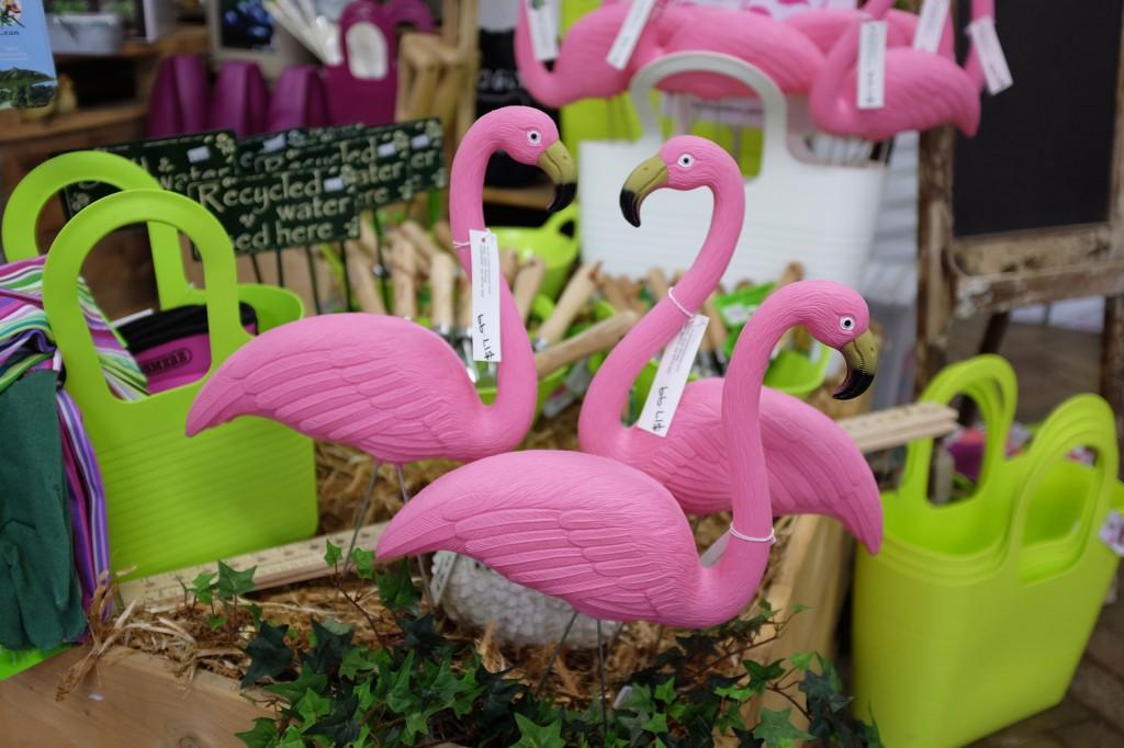 Van Loons Flamingos