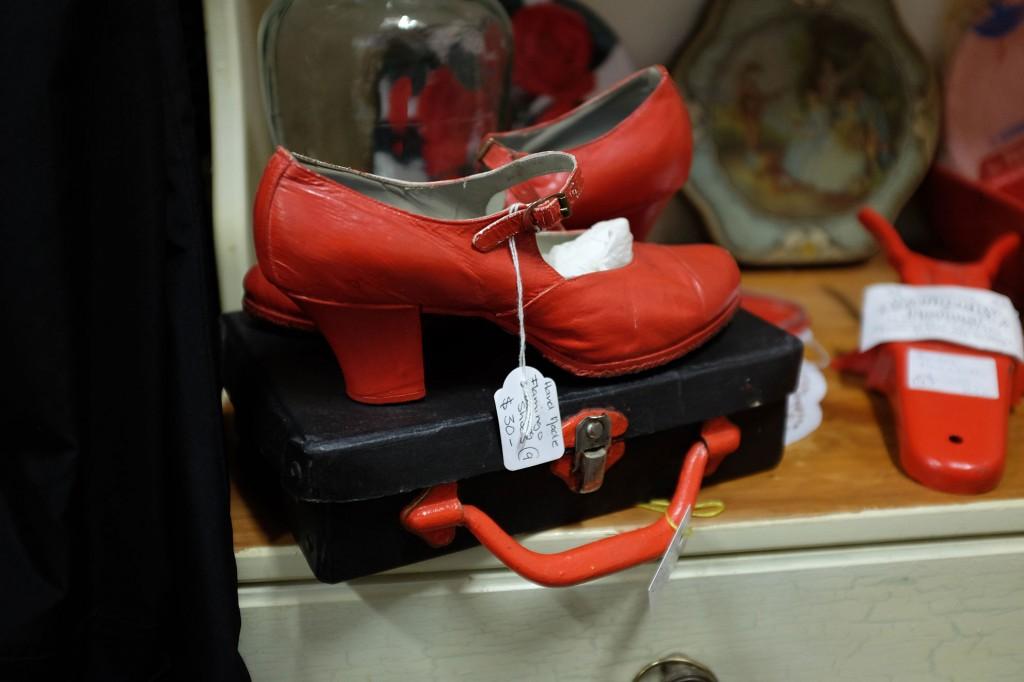 Flamencoshoes