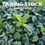 Taking Stock - August 2014