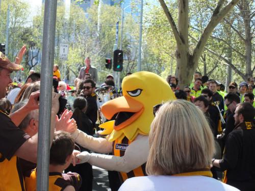 Hawk-Mascot