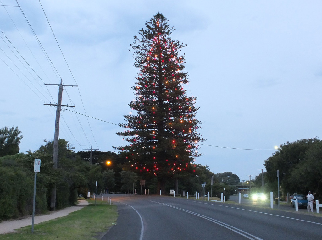 Pt-Lonsdale-Christmas-Tree