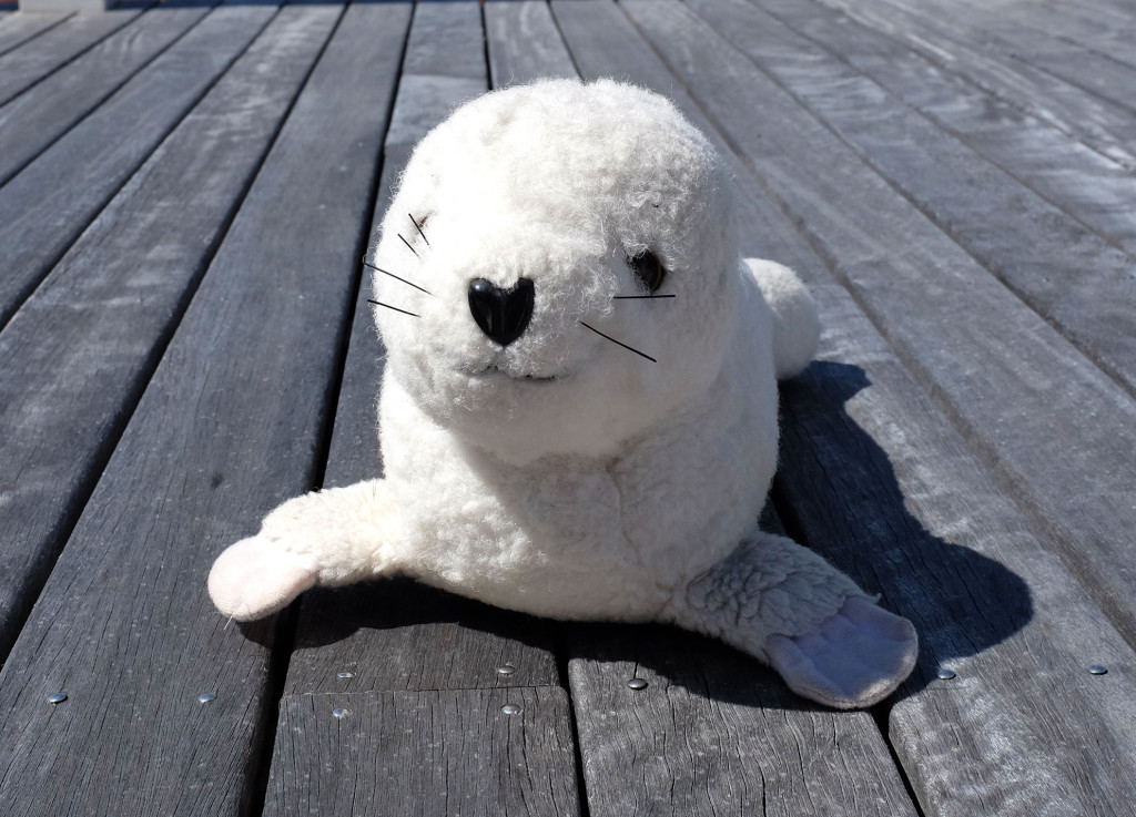Seal-pup-toy