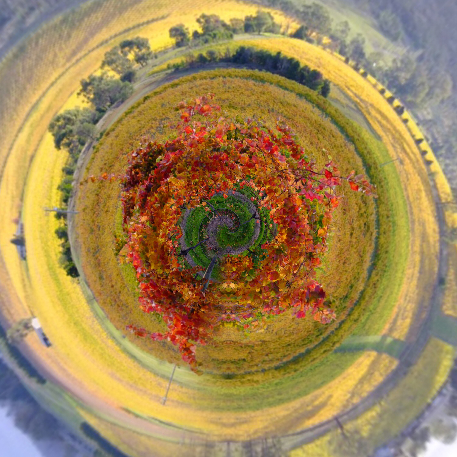 how to create tiny planet photo