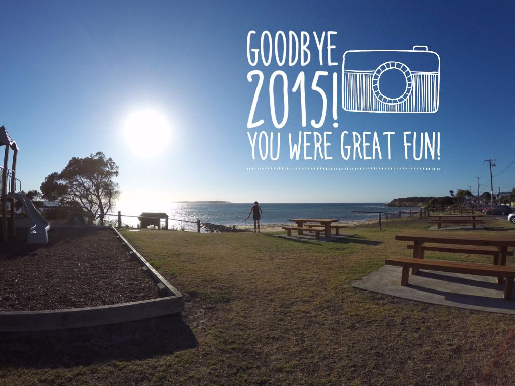 Goodbye-2015