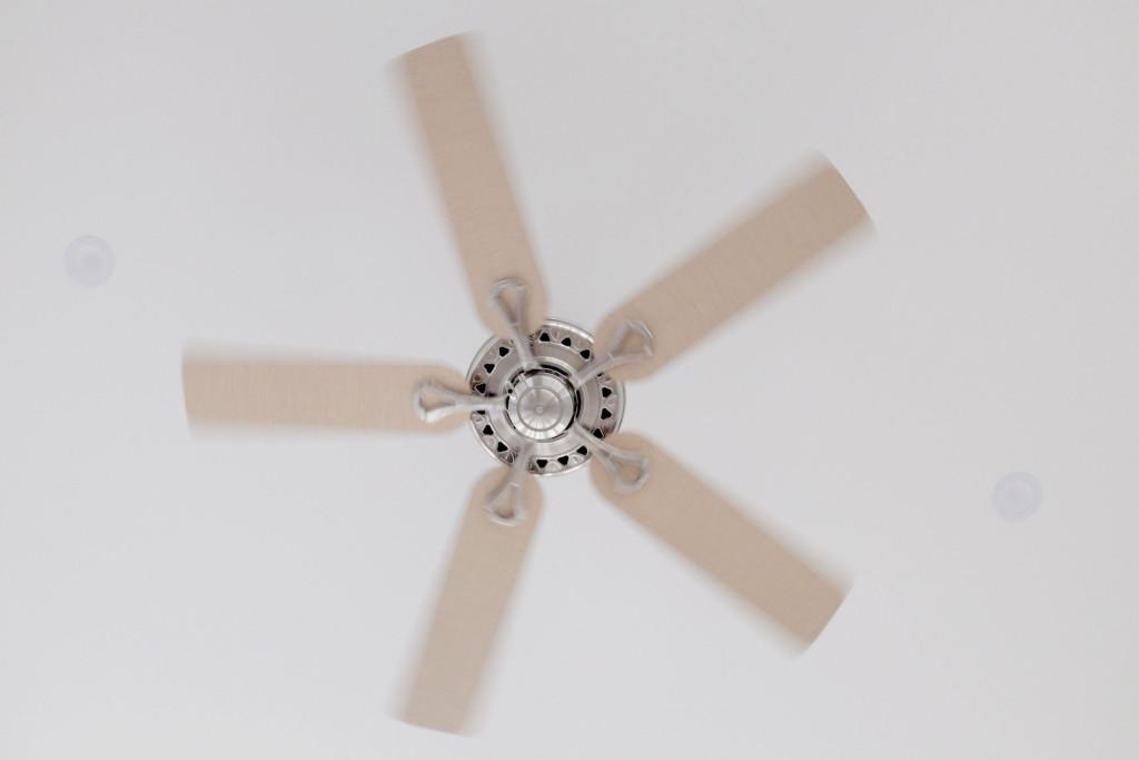 Summer-fan