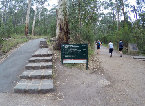 Mt-Dandenong-Walks