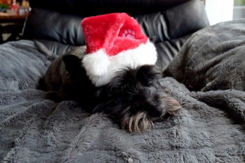 Christmas-Cairn