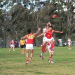 AFL International Cup 2014
