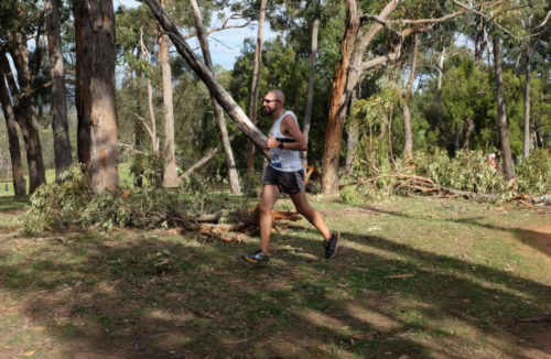 Wandin-Park-run
